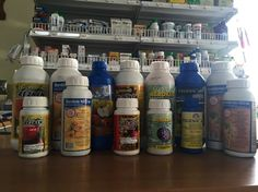 Tavaszi lemosó permetszerek - gazigazito.hu Spray Bottle, Cleaning Supplies, Vodka Bottle, Drinks, Gardening, Plants, Drinking, Beverages, Cleaning Agent