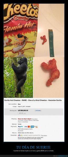 La subasta por este cheeto que es clavado al gorila Harambe se ha ido de las manos - Cuando le tomas el pelo a un iluso y ganas $99K por un cheeto   Gracias a http://www.cuantarazon.com/   Si quieres leer la noticia completa visita: http://www.skylight-imagen.com/la-subasta-por-este-cheeto-que-es-clavado-al-gorila-harambe-se-ha-ido-de-las-manos-cuando-le-tomas-el-pelo-a-un-iluso-y-ganas-99k-por-un-cheeto/