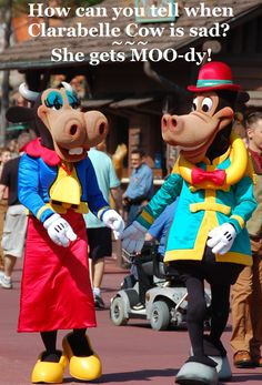 45 Free Things at Disney World and Free Disney Vacation Planning Information — Build A Better Mouse Trip Disney World Vacation Planning, Disney World Resorts, Disney Vacations, Disney Parks, Walt Disney World, Farm Jokes, Best Mouse, Disney Jokes, Disney World Tips And Tricks