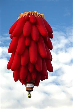 One of my favorite special shapes balloons.  A perfect representation of my hometown.  Chile Ristra + Hot Air Balloon = ABQ! :)