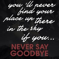 Never say goodbye Hardwell and Dyro... Lyrics: You'll never fly, if you're too scared of the heights You'll never live if you're just too scared to die Everybody wants heaven... i know but darling freedom ain't free, its a long road You'll never find your place up there in the sky.. If you never say goodbye.