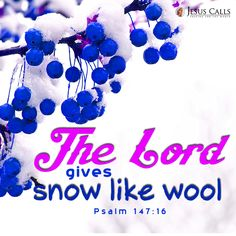 The Lord gives snow like wool Psalm 147:16