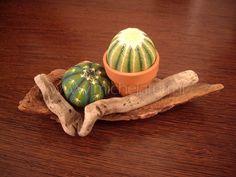 PIANTE - Michela.....Arte & Design Painted Rock Cactus, Painted Rocks, Rock Painting Designs, Paint Designs, Stone Cactus, Rock Flowers, Rock And Pebbles, Dots Design, Rock Crafts