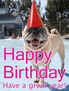Birthday Party Pug Card: This cheerful birthday card is perfect for your party-loving friend. The adorable pug put on its best celebration hat and can't wait for some treats for making the appearance at the birthday bash! Make someone's special day even happier with this festive birthday card!