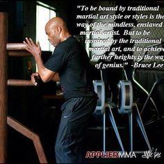 """Like Water""| Anderson Silva practicing Wing Chun"