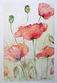 SUNLIT POPPIES  An Original Small Watercolour Painting by Amanda Hawkins  Size of painted area: 9 x 14cm approx Not framed or mounted  About
