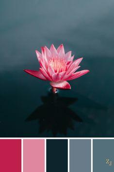 ZJ Colour Palette 441 #colourpalette #colourinspiration