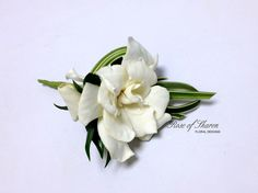 Rose of Sharon Floral Designs: True Love Tuesday: Gardenia Love