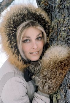 What do people think of Sharon Tate? See opinions and rankings about Sharon Tate across various lists and topics. Sharon Tate, Hollywood Vintage, Classic Hollywood, Hollywood Glamour, Hollywood Divas, Hollywood Actresses, Veronica Lake, Charles Manson, Roman Polanski