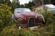 Bastnas Car Graveyard