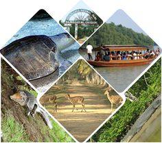 ShakuntalaNivas offers Kuldiha tourism tours on wildlife sanctuary tour in Orissa, Kuldiha forest travel package, book your weekend sanctuaries trip from Panchalingeswar to Kuldiha, find best hotels, cottages, lodge with delicious foods.@www.shakuntalanivas.com/kuldhia.html