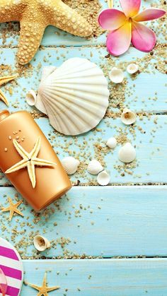 Blue Wood Seashells Sea Star iPhone 6 Plus HD Wallpaper