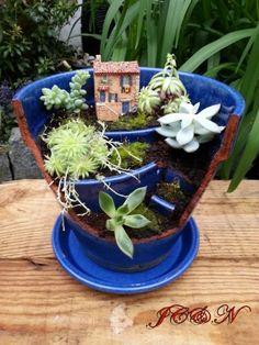 Miniture Garden