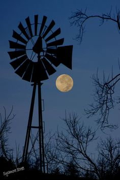Shoot for the Moon: Tips on Photographing the Moon