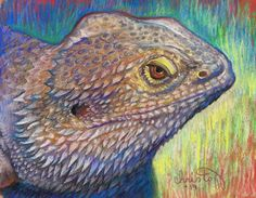"""Emily Christoff's Daily Paints: """"Solace"""" Animal, 8 x 10, pastel, $200.00"""