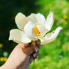 April 25, Magnolias, Sugar Flowers, Rose, Plants, Instagram, Magnolia Trees, Pink, Plant