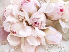 Rose+