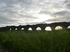 A Roman aqueduct near Tarquinia, Italy Urban Decay, Abandoned, Roman, Places, Artist, Italia, Left Out, Artists, Ruin