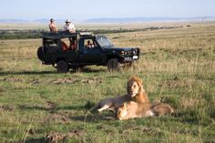 KENYAN SAFARI: Massed herds of migrating wildebeest, red-robed tribesmen and flamingo-carpeted lakes: you can't get much more adventurous while on safari through the lands of beautiful Kenya.  Make that honeymoon a reality with Go 2 Africa and sign up for one of their packaged tours or create your own custom adventure.