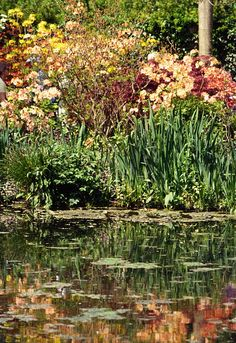 The gardens of Monet. Giverny, France