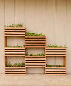 Horta vertical – mais uma ótima opção para a sua alimentação saudável! | Borboletas de Verão