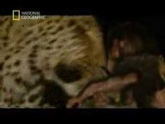 Minilogue - The Leopard (extrawelt remix) - YouTube