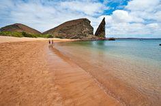 Equateur & Galápagos http://www.ilesdumonde.com/andes-foret-amazonienne_iles-galapagos_voyage-equateur_voyage-ile-mer.aspx