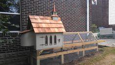 Chicken Church