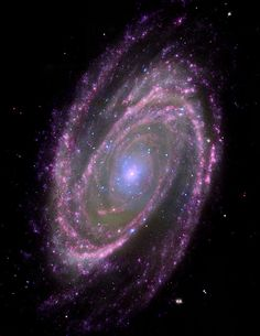 This composite NASA image of the spiral galaxy M81, located about 12 million light years away