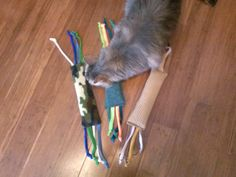 Organic catnip filled cat body pillows with padded foil inside as well. CATS LUV EM.  $8 ea. marlas2468@yahoo.com  Proceeds pay for vetting bills for Xtreme rescued cats and dogs that other rescues gave up on and were getting rid of. Some had decided to euthanize them. We take pets that other rescue deem unadoptable and get them perfect homes. marlas2468@yahoo.com