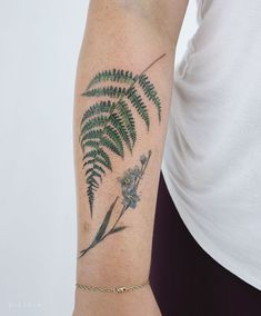 "Ola | tattoo artist on Instagram: ""A fern for Daneille, thank you! The bottom flower is not mine. #ferntattoo #fern #fernlove"" Fern Tattoo, Leaf Tattoos, Foto E Video, Photo And Video, Fotos Do Instagram, Ferns, Tattoo Artists, Watercolor Tattoo, Flowers"
