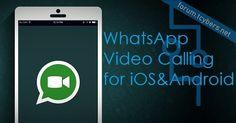 whatsapp everybody indir Whatsapp Plus, Marketing, Phone, Telephone, Phones