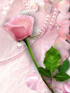 Pink roses and pearls, what a beautiful combination ...