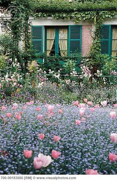 Monet's Garden, Giverny, France.  I see pink tulips, and are these blue forget-me-nots with them?  Wowie!!