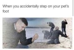 when you accidentally step on your pets foot XD