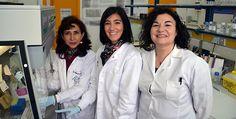 Las #doctoras Zulema Bustamante, Elena Sevillano y Lucía Gallego en un #laboratorio de la #Universidad del País Vasco.