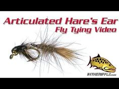 Nymphs - Flies fishing under the surface imitating subadult insects Hare's Ear, Under The Surface, Fishing Videos, Gone Fishing, Nymphs, Fly Tying, Tie, Outdoors, Facebook