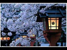 Geisha music
