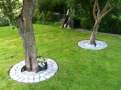 Beautify Your Garden with Landscaping Around Trees - Home & Garden: Inspiring Interior, Outdoor and DIY Ideas Landscaping Around Trees, Small Front Yard Landscaping, Backyard Landscaping, Small Garden Landscape, Landscape Design, Garden Design, Landscape Borders, Landscape Architecture, Garden Yard Ideas