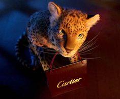Cartier Winter Tale 2013 Amazing!!!