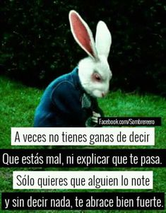 Asi de simple.. Flirting Quotes, Sad Quotes, Life Quotes, Sad Texts, I Hate My Life, Inspirational Phrases, Sad Love, Spanish Quotes, Alice In Wonderland
