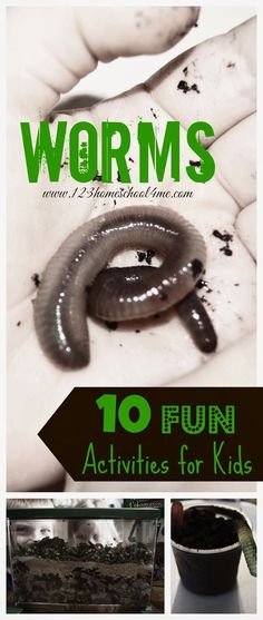 Worm Unit for kids - 10 fun kids activities to explore worms. Includes FREE worm observation book great for science observations for preschool, prek, kindergarten, 1st grade, 2nd grade, and 3rd grade kids (homeschool, science) - GREAT IDEAS!