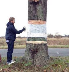 El diseñador gráfico Daniel Siering y el director de arte Mario Schuster (también conocido como Mario Shu), ambos dedicados a la creación de diseños urbanos, han tomado un árbol en una carretera de...