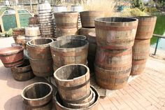 Grow potatoes in a barrel