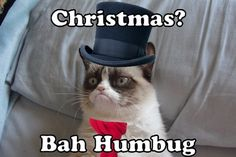 Merry Christmas from Grumpy Cat