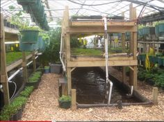 4 Easy Steps to Set-Up Your Own Backyard Aquaponics System - Tools And Tricks Club Heating A Greenhouse, Aquaponics Greenhouse, Aquaponics Diy, Greenhouse Plans, Aquaponics System, Hydroponic Gardening, Organic Gardening, Urban Gardening, Urban Farming