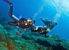 Scuba travel nominates Bali among 10 best dive sites in the world. In Bali, no matter whether you are just beginners or experienced divers, a wide variety of dive sites are available suiting your level. Tulamben is the Bali's most-visited site. What bring people to Tulamben is to dive the Liberty ship wreck. The World War II ship was hit by torpedoes from a Japanese submarine while crossing the Lombok street.