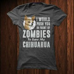Zombies #chihuahua #chihuahuatypes #chihuahuadogs