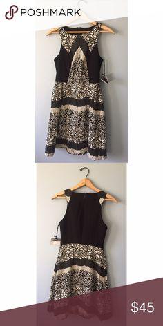 "Coconinno Dress - XS Size XS Coconinno dress by Eva Franco. NWT and never worn. B: 15-17"" W: 13-14"" L: 35"" ModCloth Dresses"