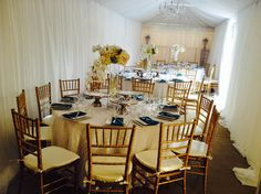 Gold Chiavari Chairs, Tent Draping, 1 Tier Chandelier, Dinnerware, Flatware and Polyester Napkins for a recent event! Great look for a wedding reception, bridal shower, anniversary and so many other events.